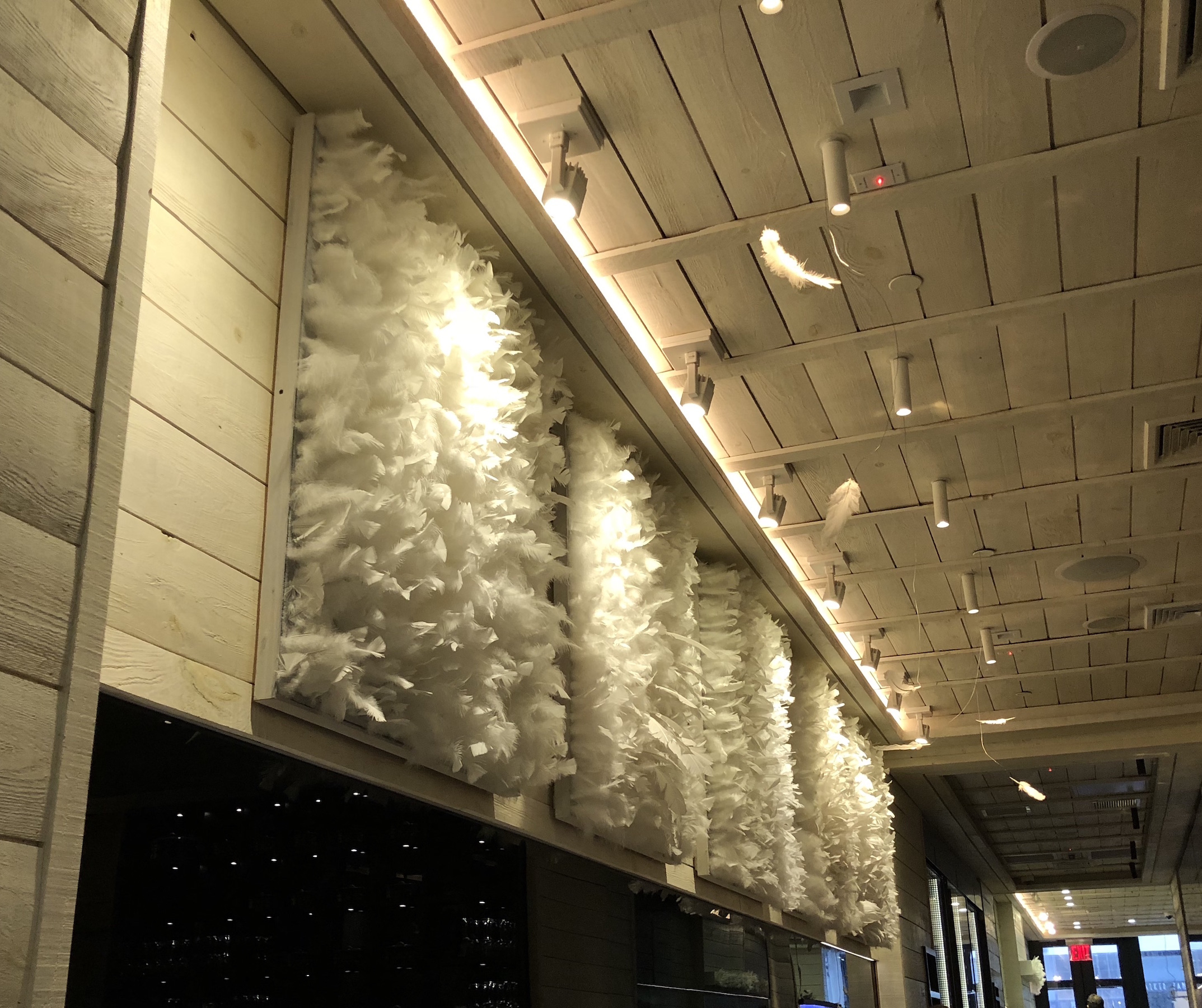 Acoustic Wall Panels with Feathers
